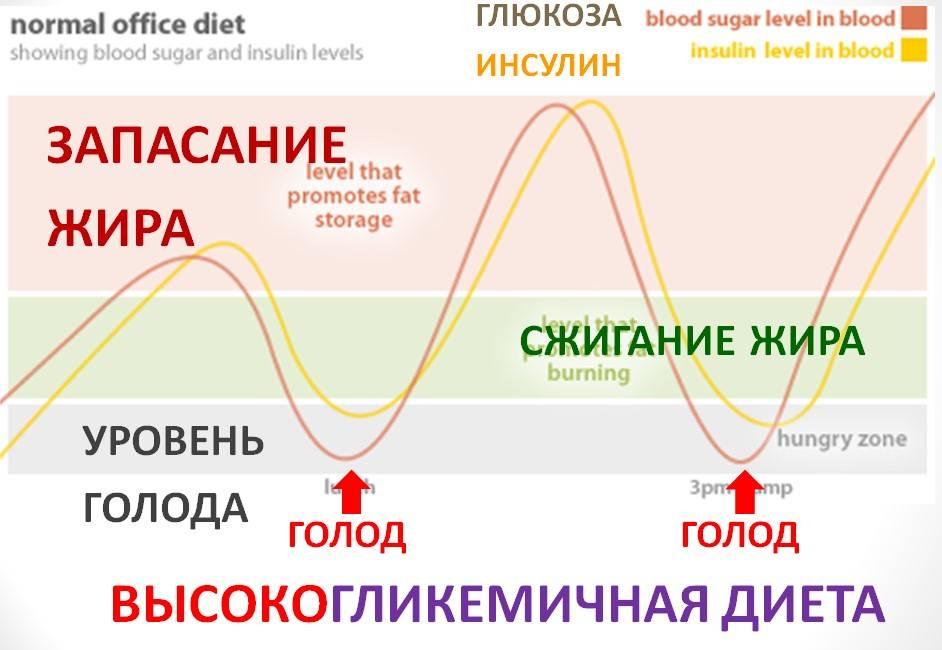 Ожирение и гормон лептин