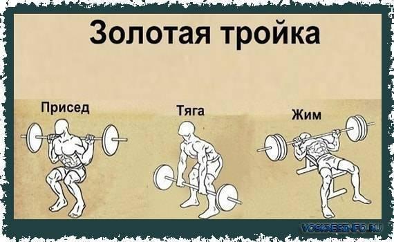Программа тренировок по фулбоди