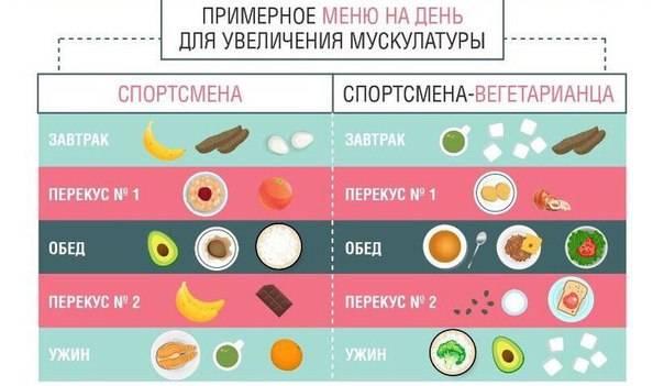 Диета для набора мышечной массы: особенности, виды и меню на неделю