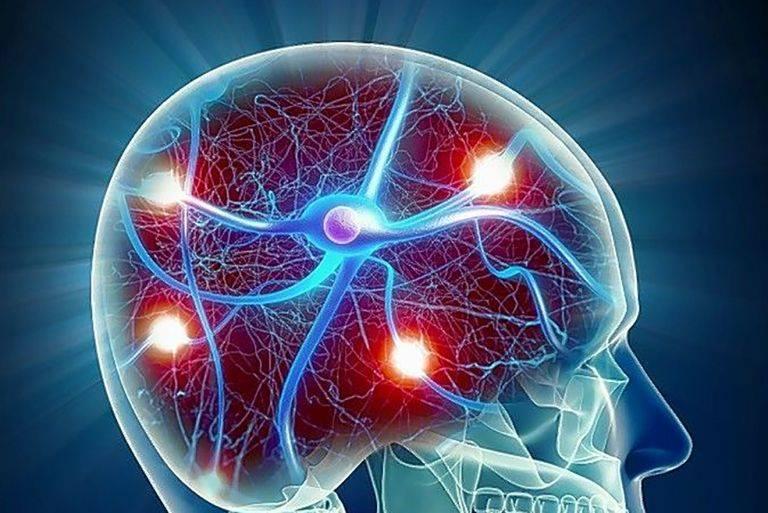 Нейрофизиолог вячеслав дубынин— о причинах тревожности и стресса :: рбк тренды