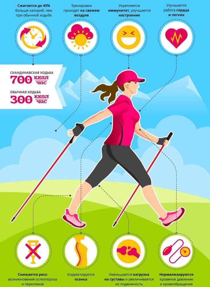 Ходьба для похудения: быстрая, скандинавская, по лестнице, на беговой дорожке, на месте, даосская