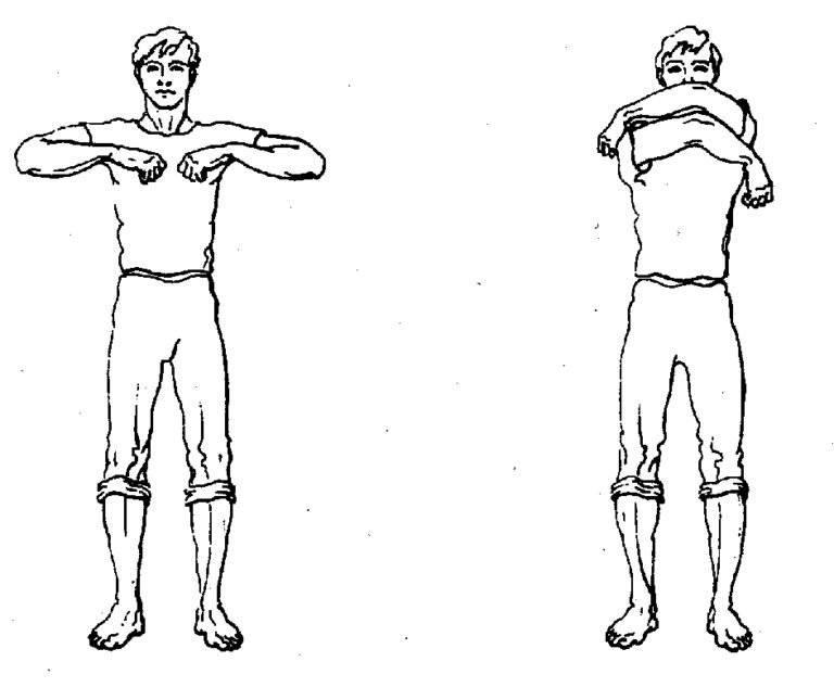 Растяжка плечевого сустава: упражнения для увеличения эластичности и повышения амплитуды движений, профилактика застойных заболеваний, разработка капсулы | статья от врача