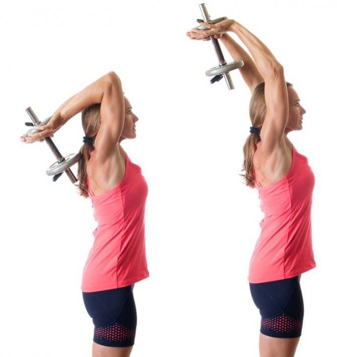 Жим гантели из-за головы одной рукой: какие мышцы работают, техника выполнения