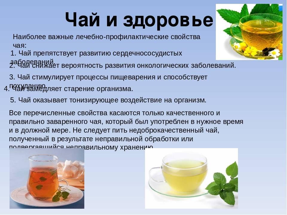 5мифов озелёном чае, которым пора перестать верить