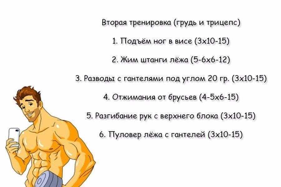 Сушка тела для мужчин: меню и программа тренировок