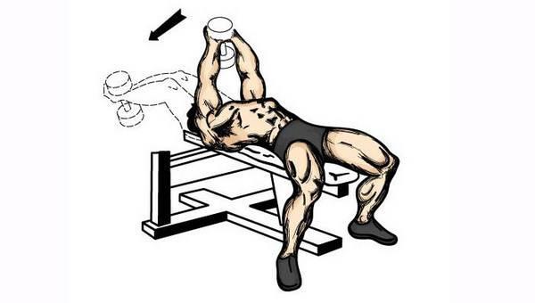 Упражнения с гантелями при больном позвоночнике