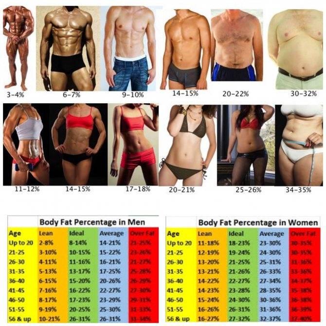 Какой должен быть процент жира в теле, когда видно шесть кубиков пресса