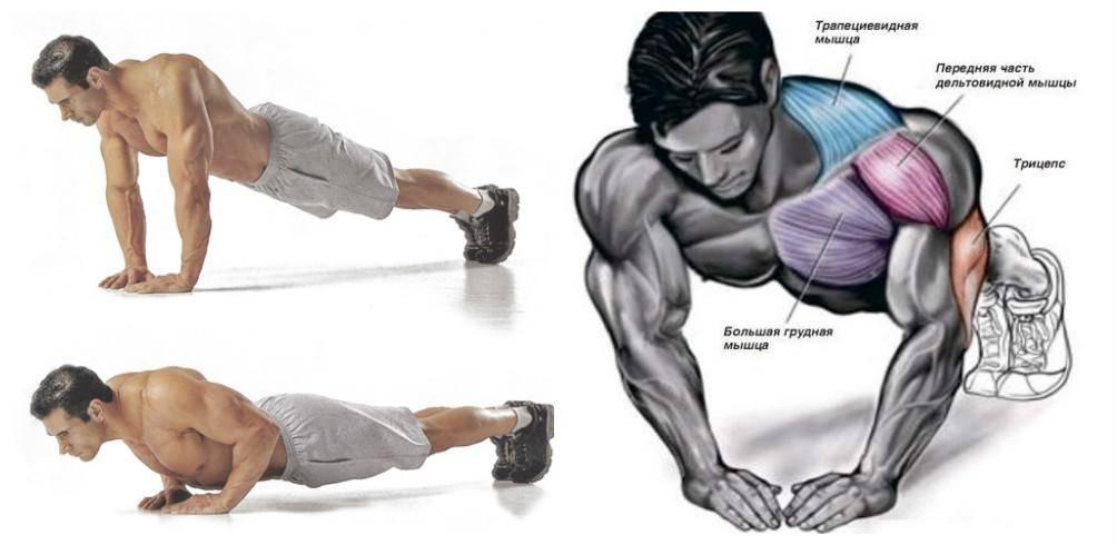 Как нужно отжиматься, чтобы накачать грудные мышцы мужчинам   muscleprofit