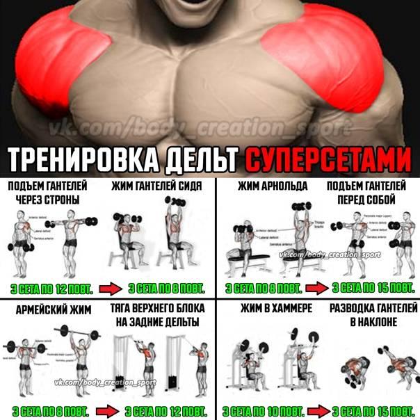 Программа тренировок на руки и плечи в один день