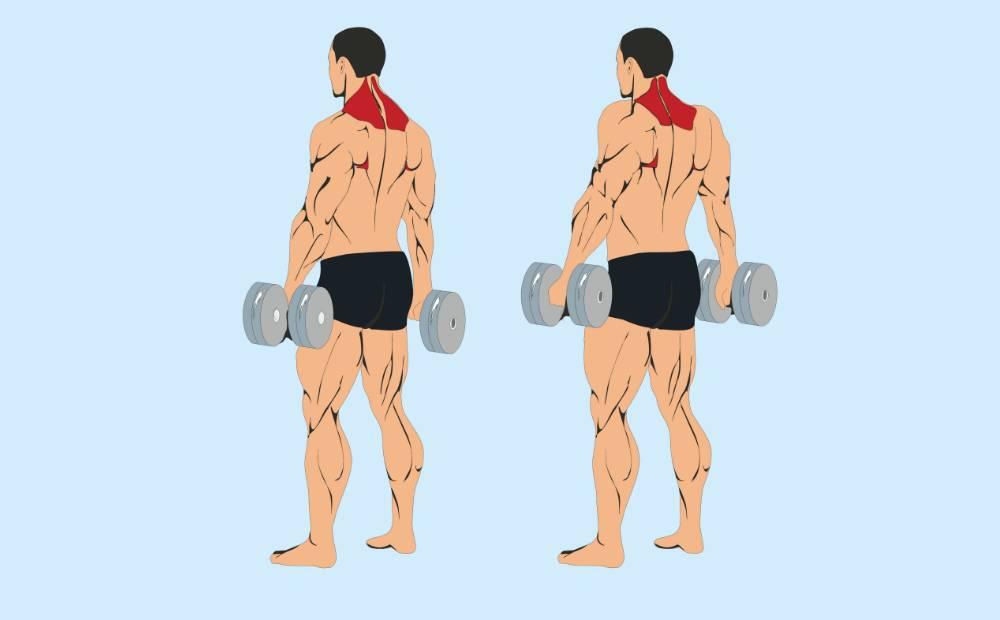 Упражнения для трапеции в домашних условиях для мужчин - kak-nakachat.pro