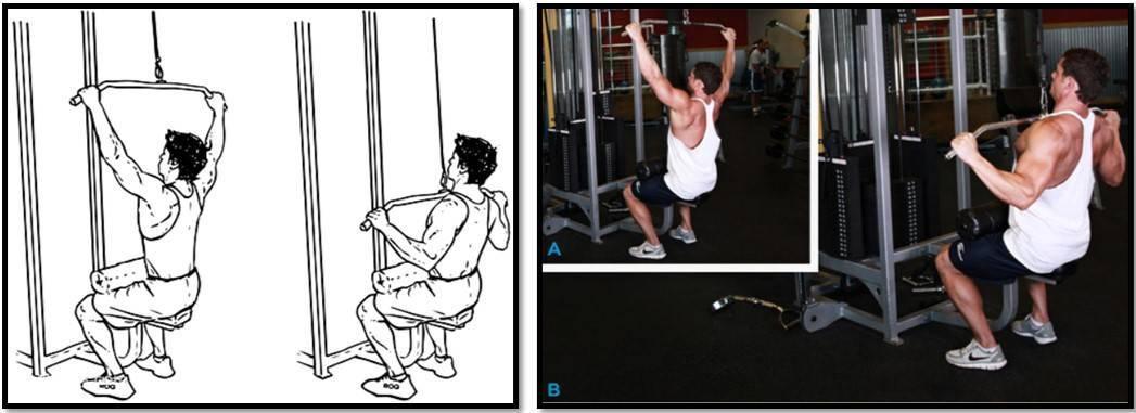 Тяга вертикального блока обратным хватом: техника выполнения, работающие мышцы, разновидности