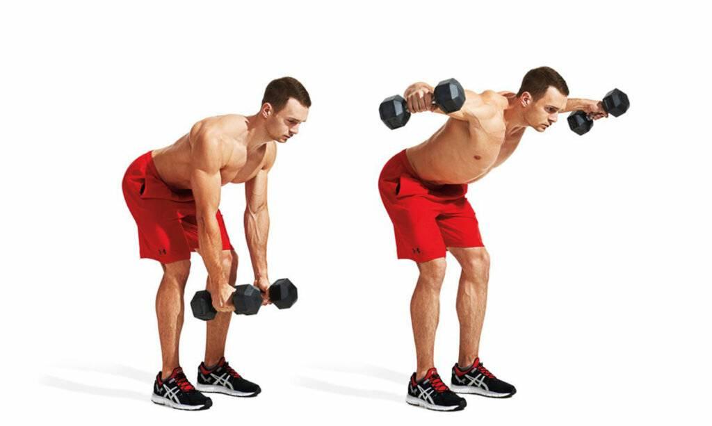 Наклоны в стороны с гантелями: техника, мышцы и преимущества