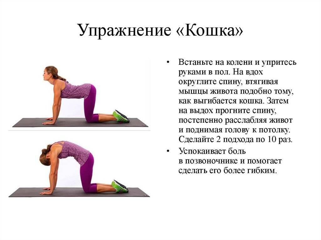 Как выпрямить позвоночник в домашних условиях: упражнения