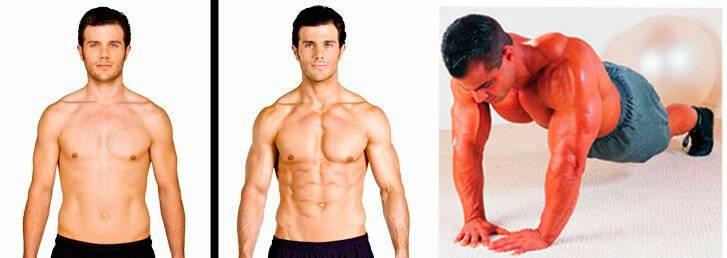 Как накачаться за 3 месяца: советы о базе и росте мышц