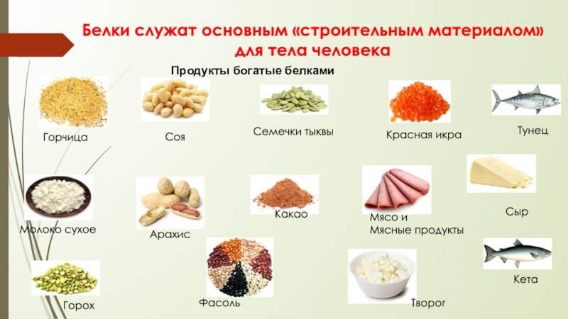 Продукты богатые белком высокого качества для питания спортсменов