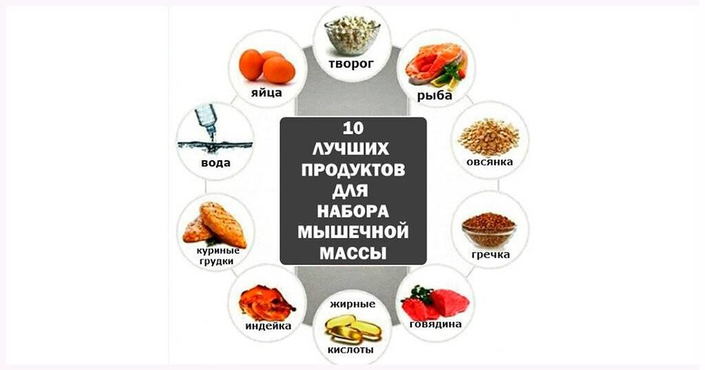 Высокобелковые продукты —в каких продуктах больше всего белка?