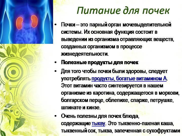 Диета и правильное питание для почек: меню на неделю   компетентно о здоровье на ilive