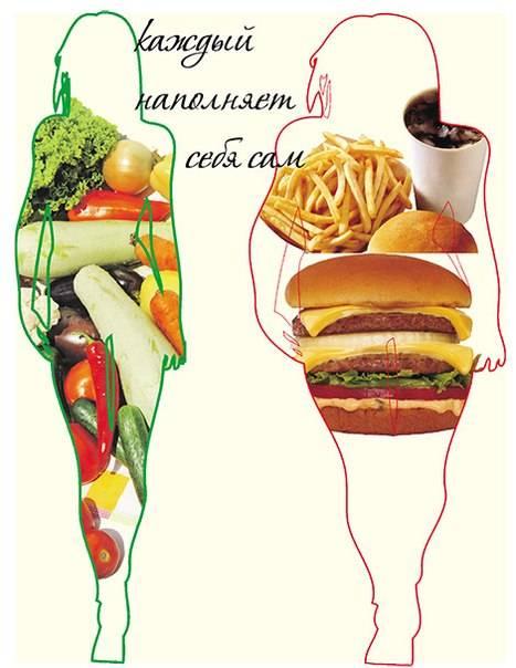 Почему от жира не толстеют? мы есть то, что мы едим. вредные и полезные жиры.