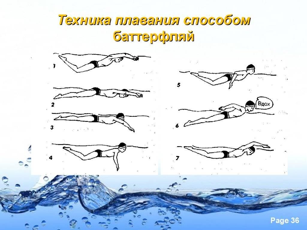 Плавание на боку: техника стиля, польза и когда рекомендуется применять данный способ?
