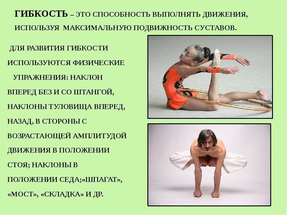 Растяжка для начинающих: 9 супер упражнений для гибкости тела