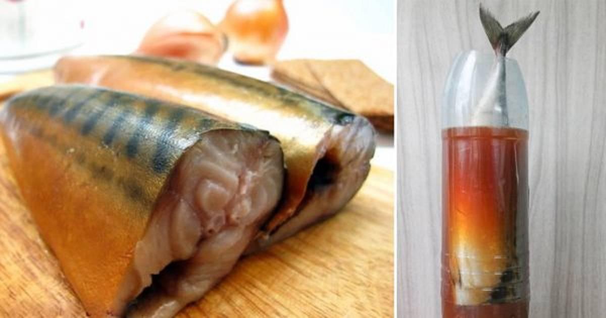 Как приготовить скумбрию в луковой шелухе: рецепт за 3 минуты и другие варианты, фото и видео