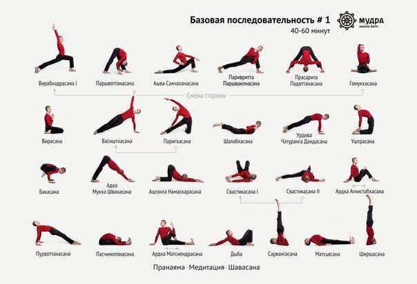 Йога для начинающих: позы, асаны, виды йоги, основные советы