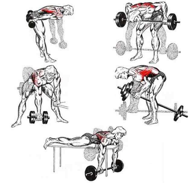 Тренировка спины в домашних условиях: комплекс упражнений для укрепления мышц без тренажеров