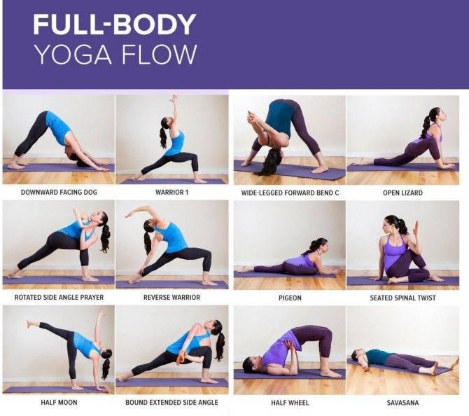 Хатха-йога: асаны, описание, польза. хатха-йога для начинающих: самые первые позы