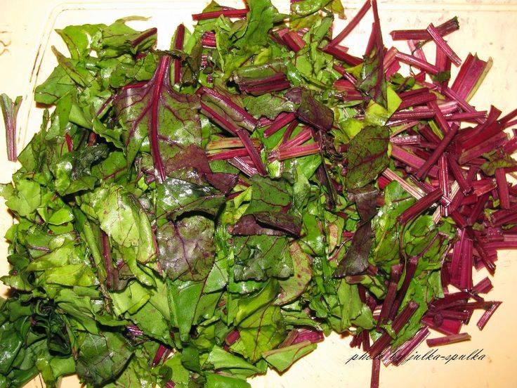Можно ли использовать листья свеклы в суп