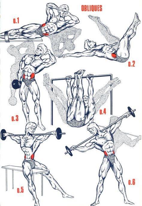Как накачать грудь? лучшие упражнения для грудных мышц в зале