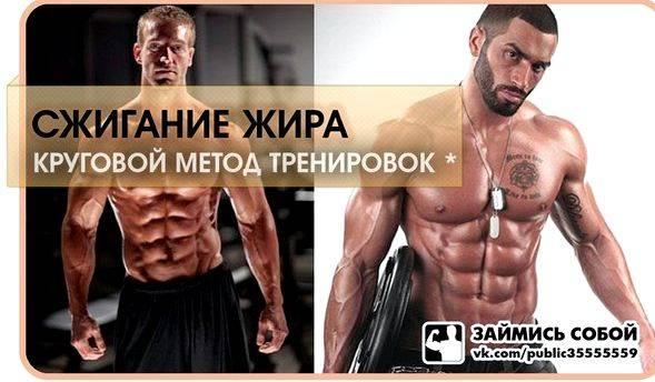 Жиросжигающие тренировки: кардио, интервальные, силовые упражнения