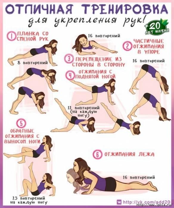 8 лучших упражнений для похудения рук и прорисовки мышц