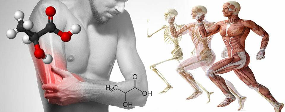 Боли в мышцах - лечение, симптомы, причины, диагностика | центр дикуля