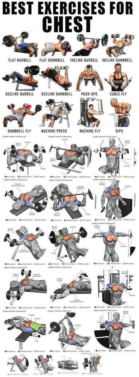 5 программ тренировок для наращивания массы грудных мышц - dailyfit