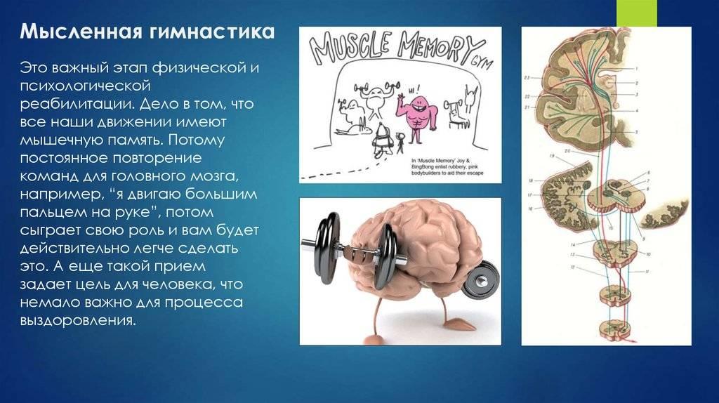 Электростимуляция мозга и развитие умственных способностей
