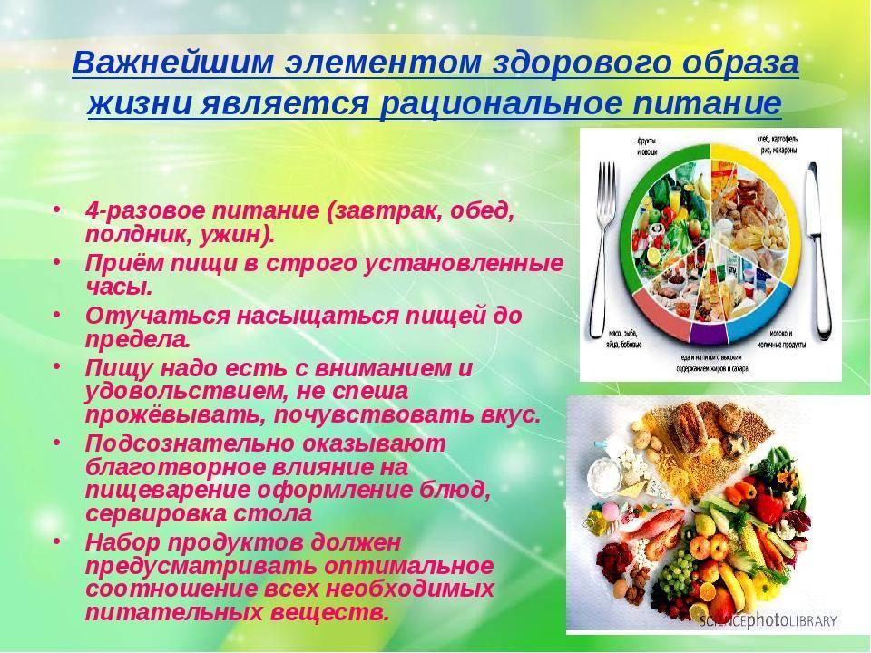 Правила здорового питания кратко | выбор за тобой