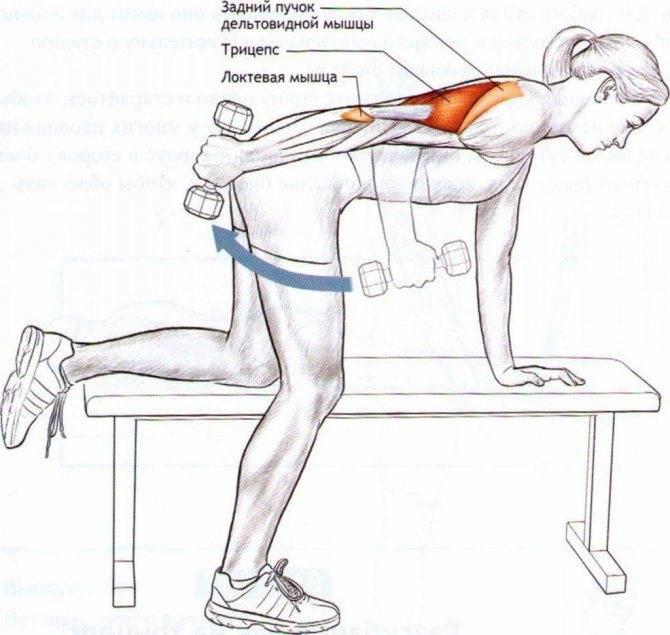 Базовые упражнения на трицепс