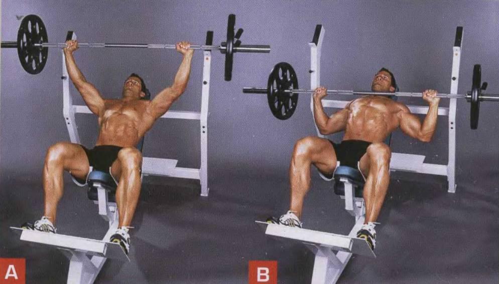 Жим гантелей на наклонной скамье: техника головой вверх, под углом 30 и 45 градусов