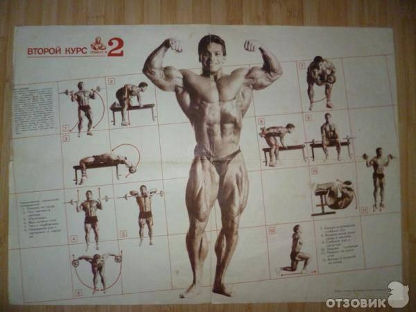 Система строительства тела