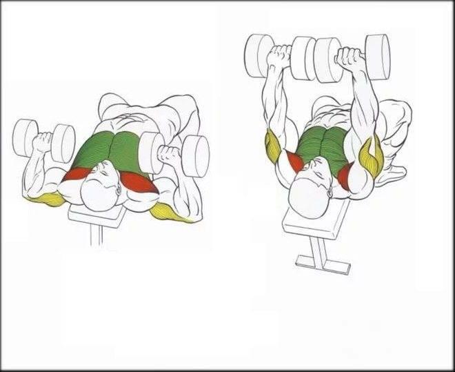 Армейский жим: правильная техника выполнения жима штанги стоя и сидя