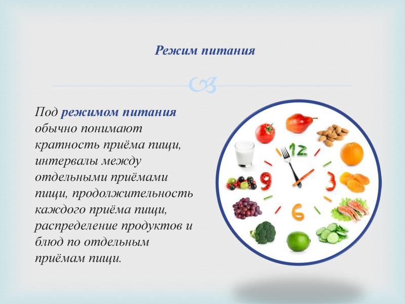 Распределение бжу в течение дня: обучение диетологии   курсы и тренинги от лары серебрянской