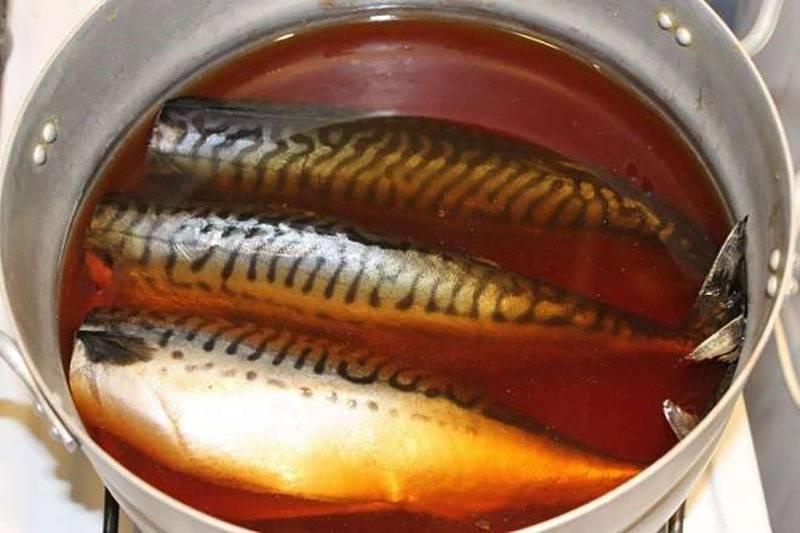 Скумбрия в луковой шелухе с чайной заваркой — самые вкусные рецепты