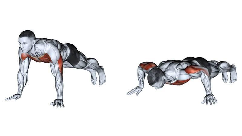Отжимания узким хватом: польза и недостатки, техника, какие мышцы работают