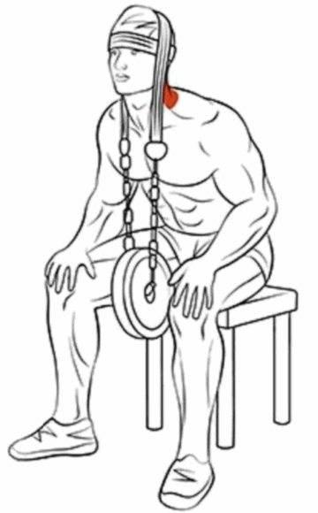 Как накачать шею в домашних условиях, упражнения для шеи и гимнастика