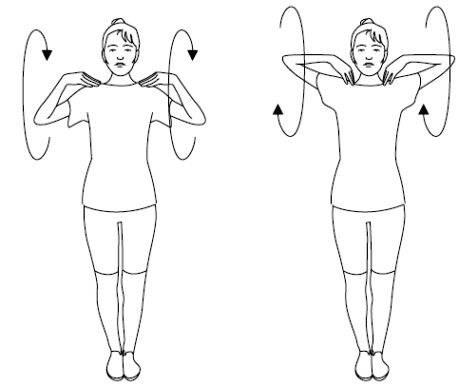 Упражнения для растяжки рук и плечевого пояса