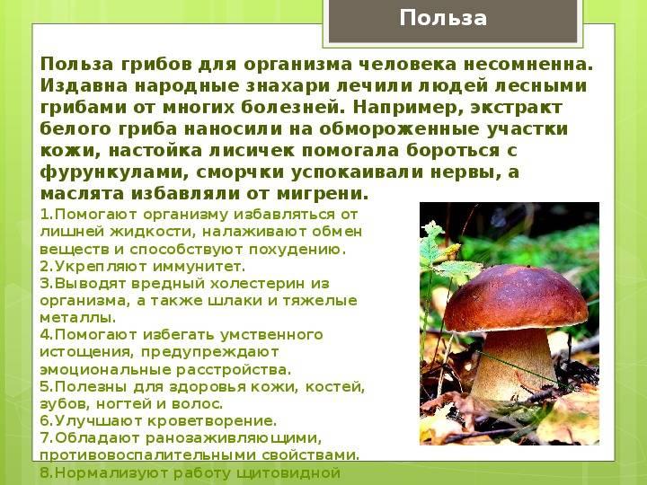 Советы по экономии на продуктах питания