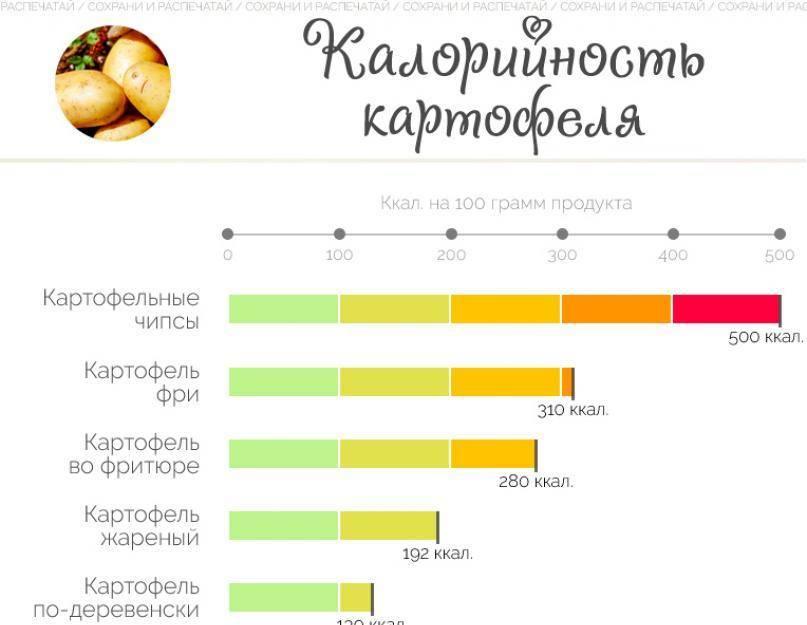 Как определить калорийность жареной картошки