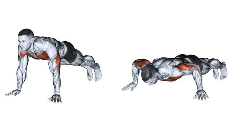 Как правильно качаться? пошаговое руководство | musclefit