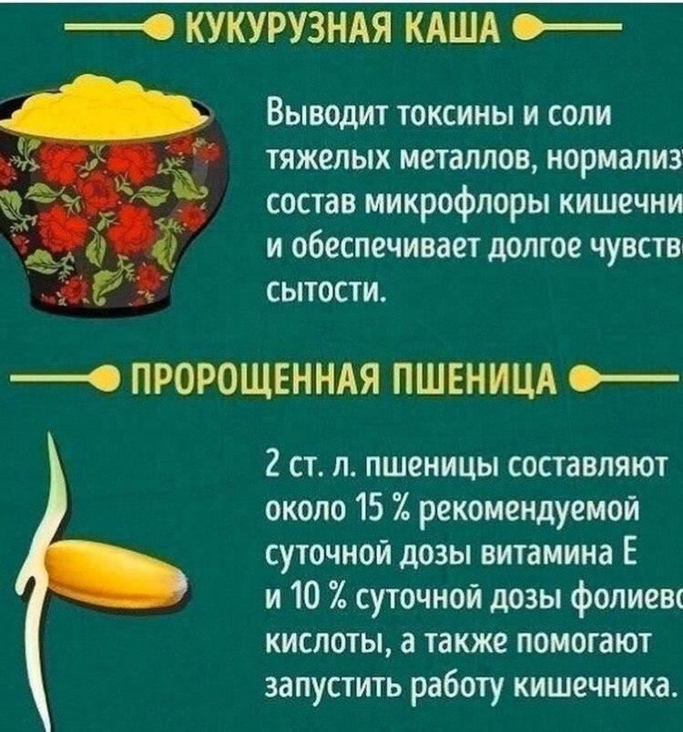 Что нельзя есть на голодный желудок: какие 10 продуктов не кушать натощак утром - мифы и реальность о еде, правильном и здоровом питании