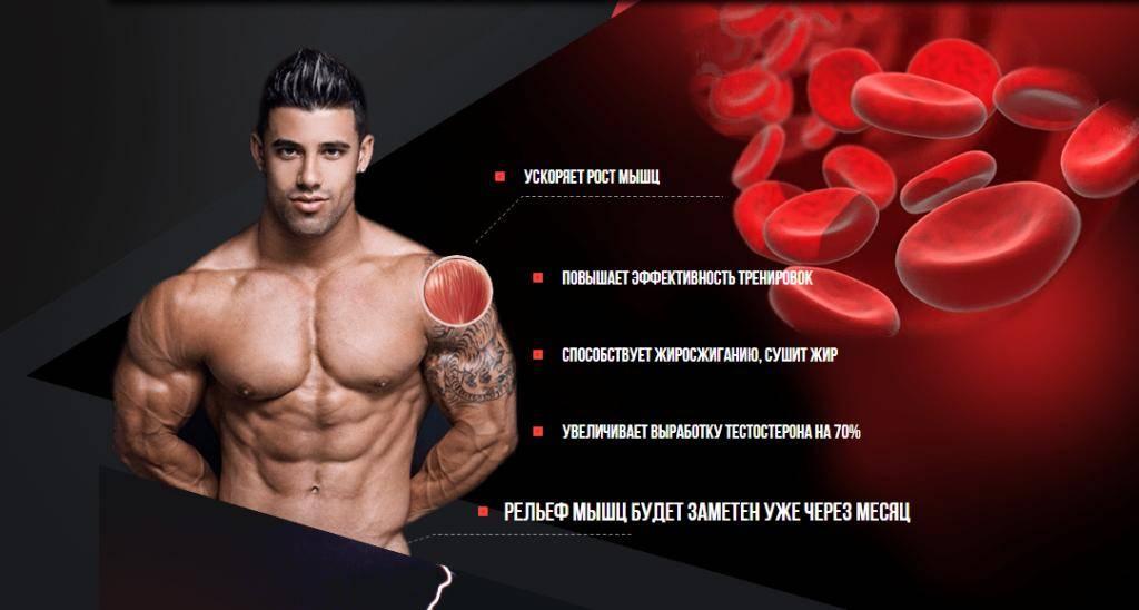 Протеин: преимущества и недостатки для организма